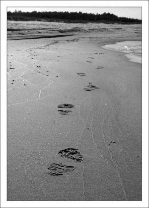 http://th05.deviantart.net/fs8/300W/i/2005/309/3/6/traces_in_the_sand_by_cthulhu_cultist.jpg