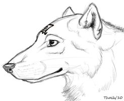 Denali sketch by thaily