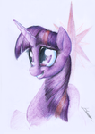 Twilight Sparkle by Huussii