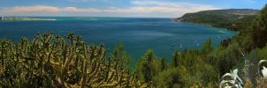 Arrabida Panorama by biffexploder