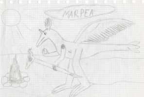Marpea by Dino-drawer