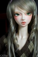 Face-up: InfinitiDoll Daffodil by cats10