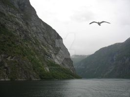 Geiranger fjord by Aniaaa