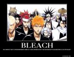 Bleach Demotivational Poster by ShimizuAkizuki