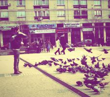 pigeons by Bzzu