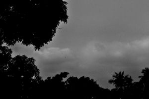 silence before the storm by manidamned