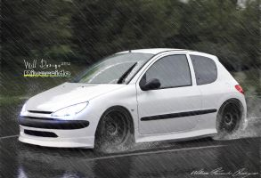 Peugeot 206 by WillCarDesign