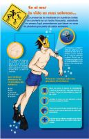 Infographic of the jellyfish by Dennysze