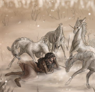 Rider and Unicorns by Camelid