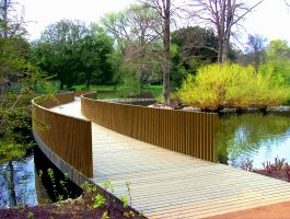 The Kew Gardens Sackler Crossing Cut Out by aegiandyad