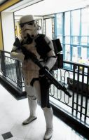 Stormtrooper Two by Neville6000