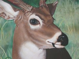 deer detail by bobeatlock