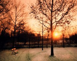 Winter Bench by jva3