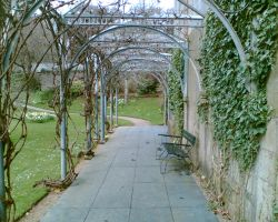 Lady Chichester's Arbour by pnexus