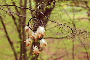 Forest Dreamcatcher by LucreciaMortishia