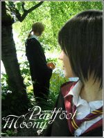 Moony and Padfoot: Watching by ame-no-uta
