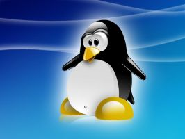 tuX shines... by SerialGFX
