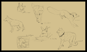 sketchpage 10 - commissions by CaledonCat