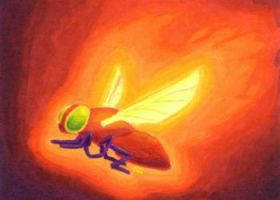 Firefly by ankewehner