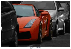 Gallardo by candear