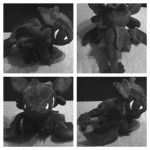 Cute chibi toothless plush by LRK-Creations