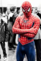 Spider-Man - LSCC 2013 by methosivanhoe