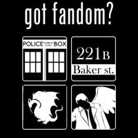 Got Fandom? Superwhomerlock by MegWolf32998