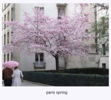 paris spring by redemptions