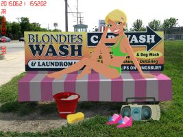 Blondie's... er, Caitlin's... Bikini(!) Car Wash? by daanton