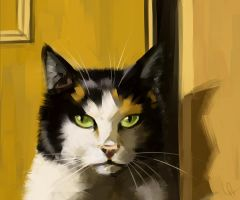 Calico by Canvascope
