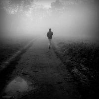 Fog walk by lostknightkg