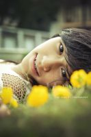 Yellow Sight by agie