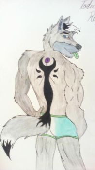 Tod's back markings by TodwolfMalachi