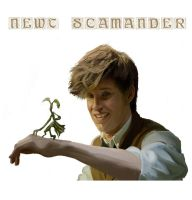 Newt Scamander by Pimento-Girl