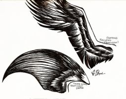 wings study 2 by rocknro8907