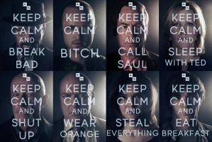 KEEP CALM AND X Y (Breaking Bad Edition) by rachelvalice