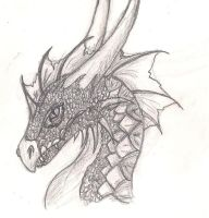 Fully Shaded Dragon Sketch by ComplexMagic