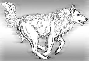 Jovan's Wolf Form Again by Dancing-Taigan