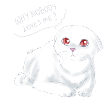 The Saddest Kitty Sketch by Kaine-chan