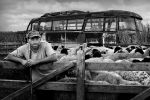 Shepherd 2 by GoranStamenkovic