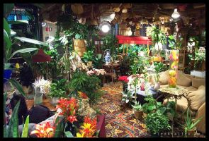 Jungle-of-Greektown by halley