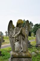 DSC 0008 Hastings Cemetery 6 by wintersmagicstock