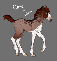 Creme x Wicca Foal for samuRAI-same by SWC-arpg