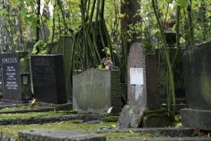 Squirrel On Grave by neverFading-stock