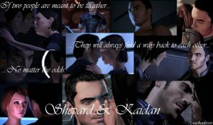 Kaidan and Shepard - Meant for Each Other (words) by ShadowcatPrime