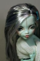Monster High Repaint 3 - 2 by Armeleia