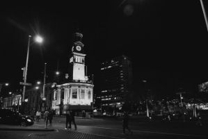 Auckland Town Hall by Eatmyblackcancer