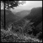 2013-145 Genesee River Gorge by pearwood