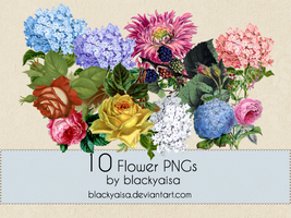 Flower PNGs: 10 by blackyaisa