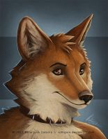 full color bust for ceiro by Sythgara
